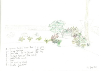 treehouse-patio-sketch